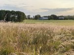 Stormwater, Ecosystems & You, Part 4: Groundwater and the Rural Landscape